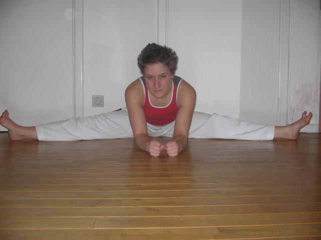 taekwondoliege