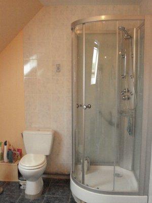 Le coin douche dans la salle de bain tiger60 for Bain en coin avec douche