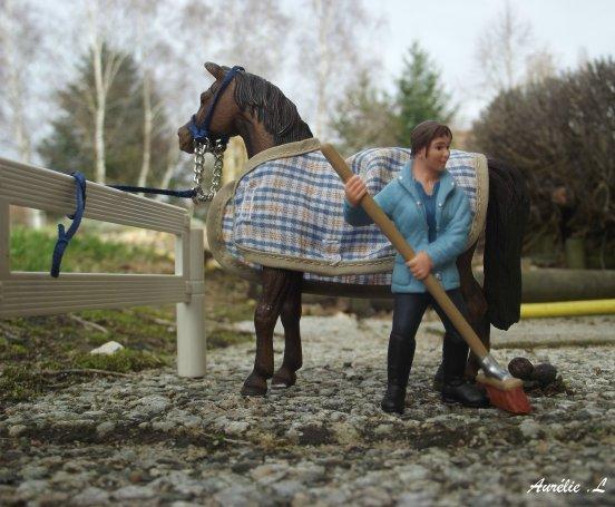 blog de x photographie xd blog photographie de chevaux. Black Bedroom Furniture Sets. Home Design Ideas