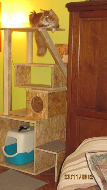 arbre chat blog de fonzylapinkoira. Black Bedroom Furniture Sets. Home Design Ideas