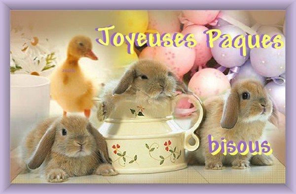 Joyeuses paques a vous tous et toutes mes ami e pour amiti et rien d autre car marre de - Joyeuses paques images ...