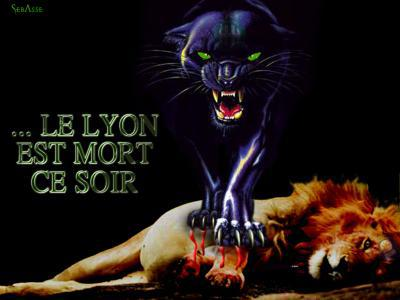 Le lion est mort se soir asse for Dans jungle terrible jungle le lion est mort ce soir youtube