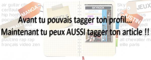BLOG : Tag ton article !