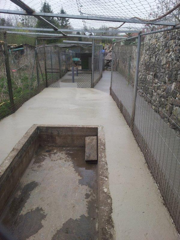 Refait tou le park de mon pote en beton avec evacuation d eau a chaque bassin blog de doudou - Bassin canard d ornement pau ...