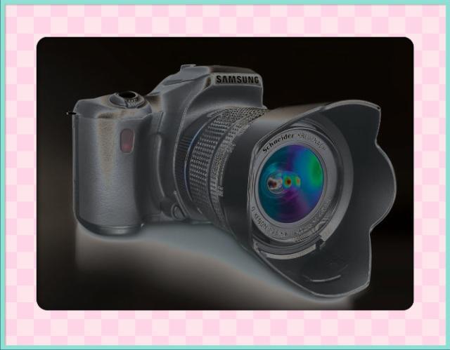 XxX-PhotoGraphe-XxX