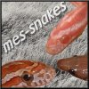 Mes-snakes