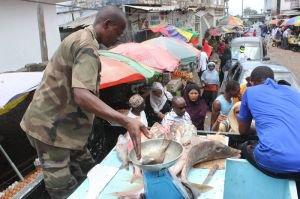Chert� du poisson : l'And tente d'att�nuer la situation