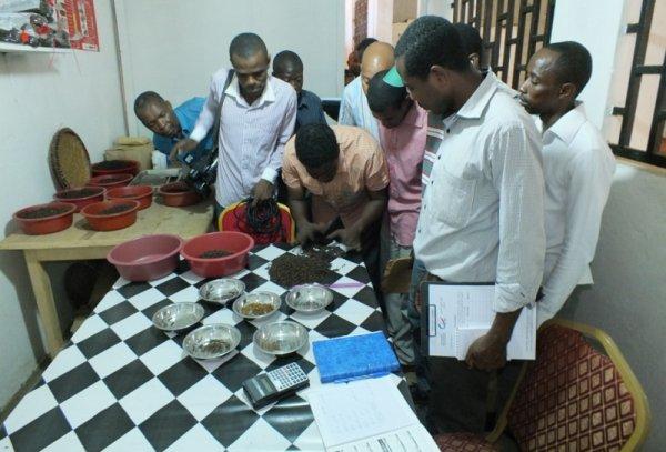 Investissements : L'Anpi fait la promotion des �entreprises mod�les� de Ndzuani