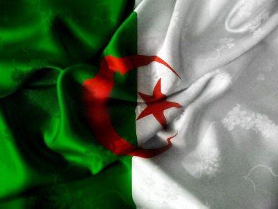 1.2.3viva l'algérie 2946967701_1_3.jpg