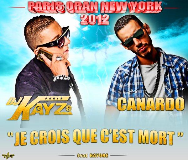 """DJ KAYZ ET CANARDO """" je crois que c'est mort"""" (2012)"""