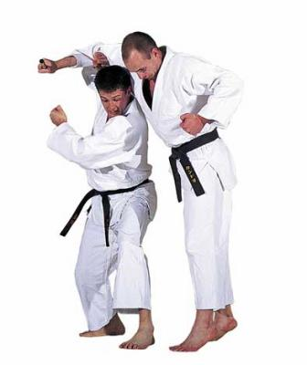 ju jitsu ou self d fense le judo club de li vin. Black Bedroom Furniture Sets. Home Design Ideas
