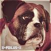 X-Poilus-X