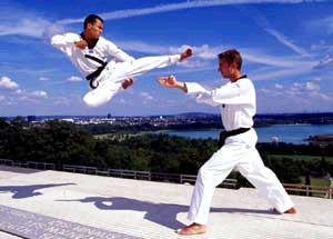 Petit historique du Taekwondo