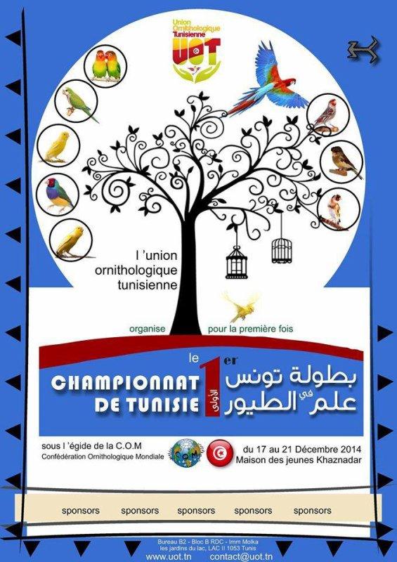 Championnat ornithologique de tunisie | بطولة تونس في علم الطيور