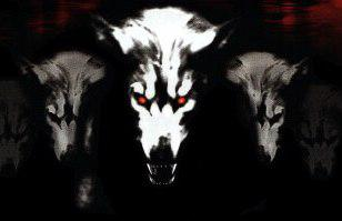 the-dogsoldiers666