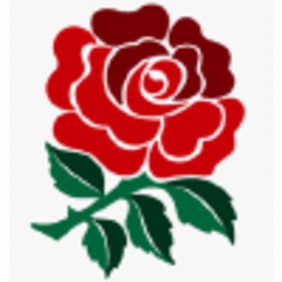 le symbole de l angleterre , la rose - Blog de spurs097