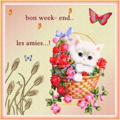 Super bon week end a tous blog de mamabikers - Bon week end a tous ...