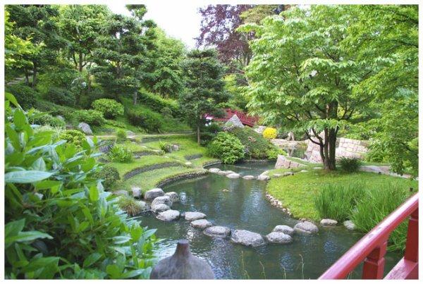 Paysage japonais vive one piece for Paysage zen