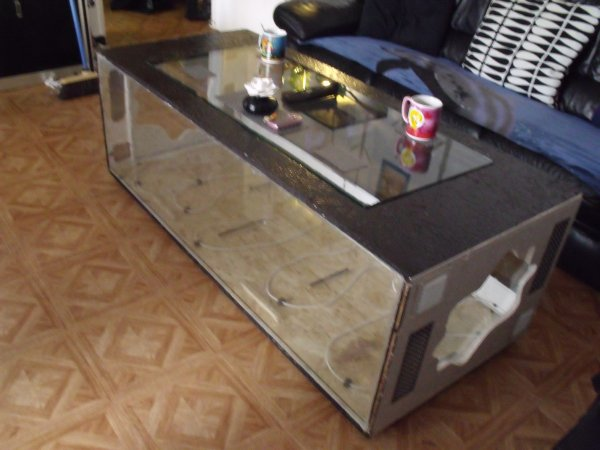 fabrication d 39 une table basse terrarium blog de elaphes mania. Black Bedroom Furniture Sets. Home Design Ideas