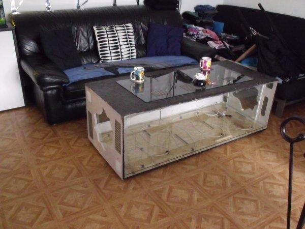 Meubles But Table Basse De Salon ~ Fabrication Dune Table Basse Terrarium Pictures