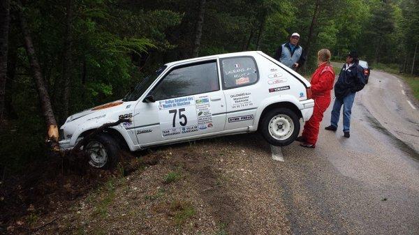 Rallye des Monts de Vaucluse 2014 - Laurans/Bellot - Peugeot 205