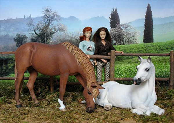 White Oak Stables  Realistic Horse Game