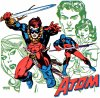Ray Palmer, le second The Atom : un super h�ros qui a su trouver son public