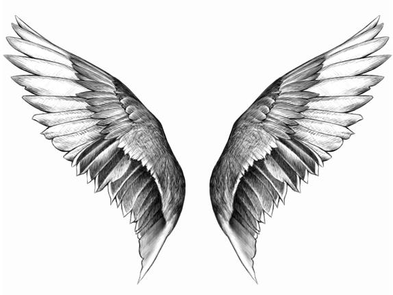 Brush ailes d 39 anges nuages r serve de brush texture - Ailes d ange dessin ...