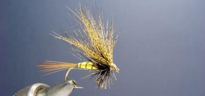Une belle mouche de mai les mouche pour la p che - Mouche jaune et noire ...