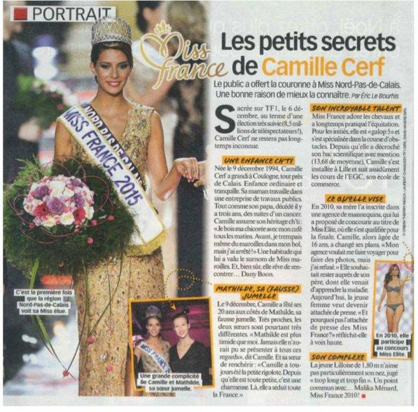 Camille Cerf - Revues de Presse