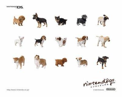 Nintendogs Cats Races