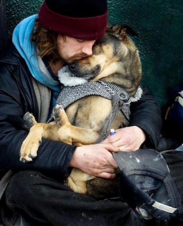En ce d�but d'hiver qui arrive je voudrais parler des animaux et de leurs maitres qui vivent dans les rues