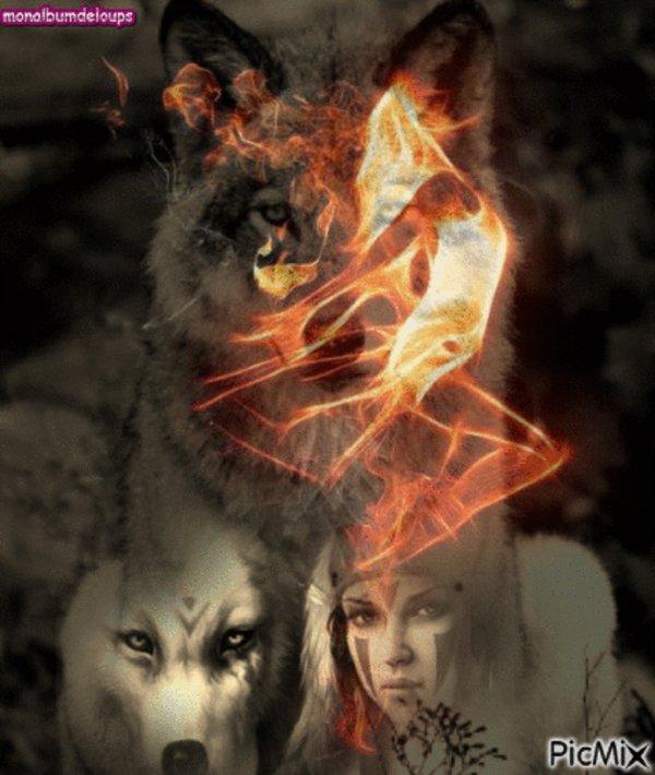 L'apparition et l'�volution du loup