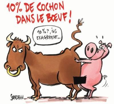 cochon - humour