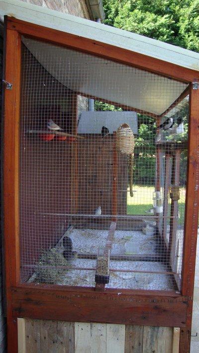 Blog de bouliaou oiseaux et cie for Voliere exterieur occasion