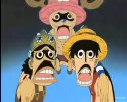 photos drole One Piece - One Piece