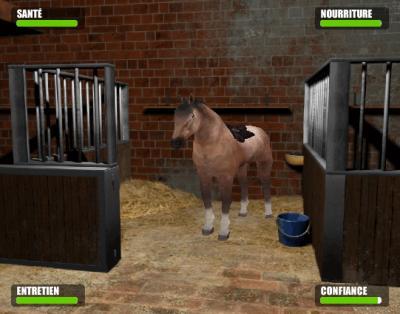 eleve des animaux virtuel sur internet