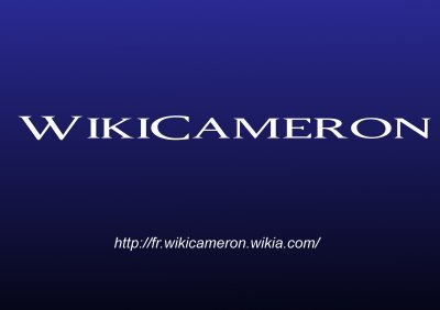 WikiCameron The Blog