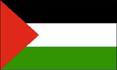 explication du drapeau palestinien free palestine. Black Bedroom Furniture Sets. Home Design Ideas