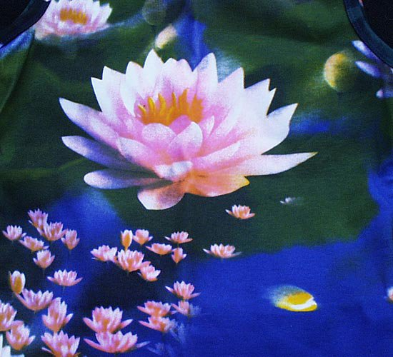 Le lotus blog de pervenche870 - Fleur de lotus bouddhisme ...
