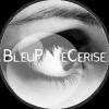 BleuPaleCerise