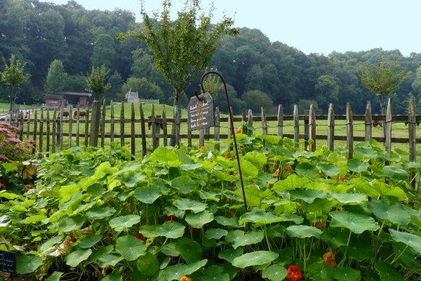 Une journ�e � la ferme auberge Le Char � banc et quelques photos plus tard... 1