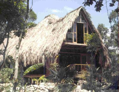 La maison de bob marley rasta roots reggae for Nommer sa maison