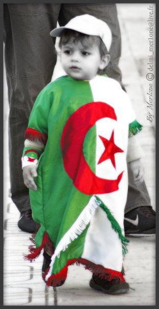 le plus beau algerien