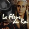 La-Fleur-Du-Roi