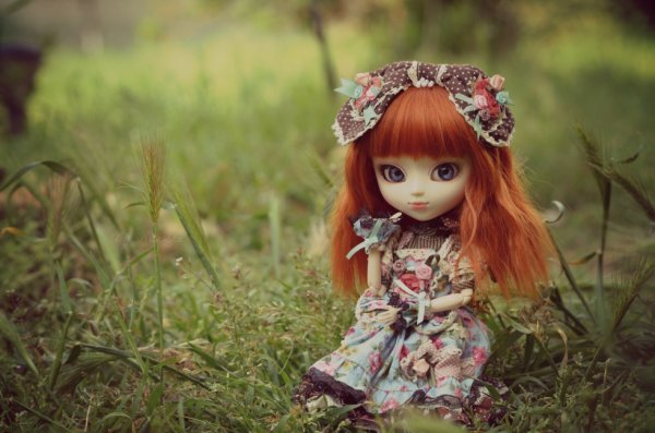 Pervenche pullip alice du jardin les pullips by nickocha for Alice du jardin pullip