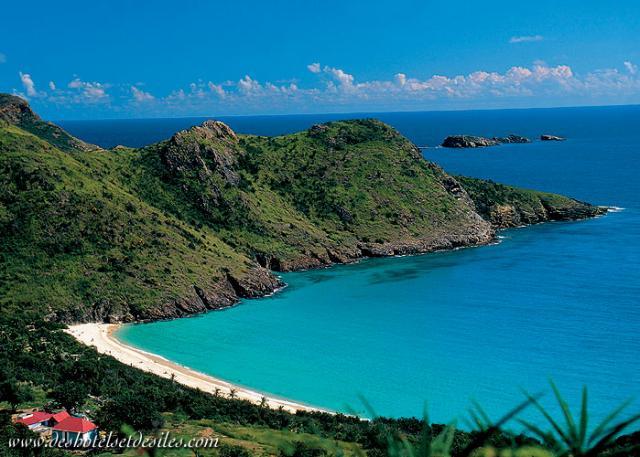 the-green-island