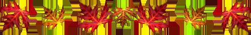 ♠♠♠♠♠♠♦♦♠♠♠♠♠♠♦♦♠♠♠♠  KDO D£ MON AMI£ AMITI£-505  ♠♠♠♠♠♠♦♦♠♠♠♠♠♠♦♦♠♠♠♠♠♠