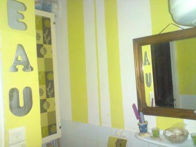 salle de bain vert anis d co. Black Bedroom Furniture Sets. Home Design Ideas
