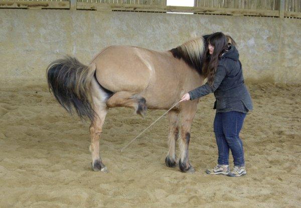 Apr�s avoir crois� ton regard, je te nommerai plus jamais cheval, mon fr�re...